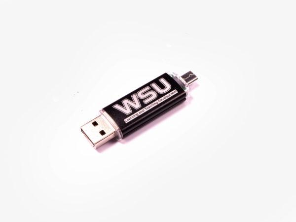 Mobile Phone Memory Stick OTG2